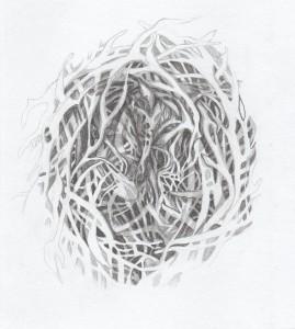 Nest II - Boukje van Iperen